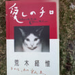 アラーキーの猫―哀悼―