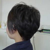 抗がん剤治療が終わり、髪が伸びてきたのでウィッグを外す準備として医療用ウィッグを短くカットしたい。 長野県 乳癌 抗癌剤治療 医療用ウィッグ・医療用かつら by ヘアーサロン オオネダ