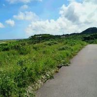 石垣島で2万7千年前の全身人骨 19体