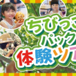 改めてカピバラの〇〇をご紹介!!