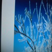 1月17日厳しい凍えの初春暮らし