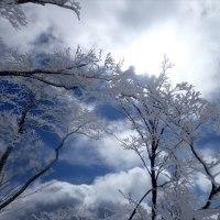 リベンジの明神平2 女神様微笑んで 薊岳まで足伸ばしてみたら…