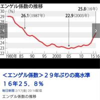 <エンゲル係数>29年ぶりの高水準 16年25.8%