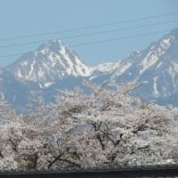 南アルプスの峰と今朝の富士