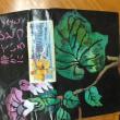 10月8日会場はラホール富士です。五色百人一首が好きな人、初心者の人もどうぞ!