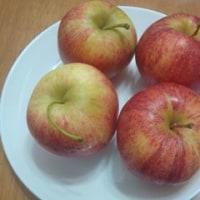 ふと食卓をみると、リンゴがあった