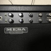 Mesa Boogie Rect-O-Verb