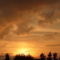 さまざまな夕日…多摩川秋景色シリーズ