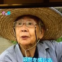 絵本作家の甲斐信枝さん