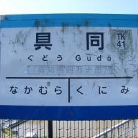 TK41具同(高知県)ぐどう
