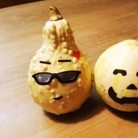 観賞用かぼちゃ