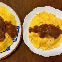 お家ご飯で福井の新?名物「ボルガライス」・・・4鉢だけのミニ「菜園」・・・ついでに「猫写メ」も(^^)