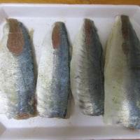 キング オブ 大衆魚☆鯵(アジ)