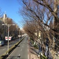 原宿駅周辺ウォーキング