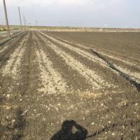 モミガラを入れた田んぼの耕耘を終了