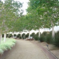 ゲッティ美術館の中央庭園に立って