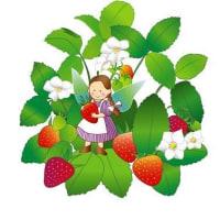 苺が美味しい季節