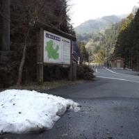 面河渓関門の様子(3月20日)
