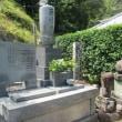 花倉城跡:ハイキングコース調査2