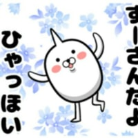 ㊗お祝い㊗ capoスザキ