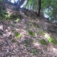 4 髙松山(339m:安佐北区)登山  流出墓地に「合同塚」が