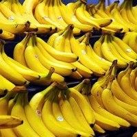 【バナナの旅から見えてくるもの】