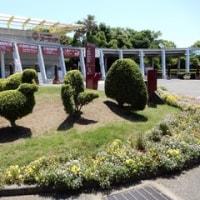 2017・5・23 第33回全国都市緑化よこはまフェア・里山ガーデン会場はのんびりと広い(^^♪