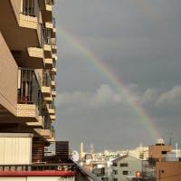 今日も「虹」が出ました