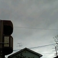 ええ、梅雨ですから