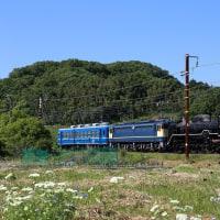 D51-200の試運転を撮影~河毛付近にて_17/05/19