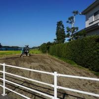ちょっと良い貸家プロジェクト!『 岬町中原のリノべ風?な貸家 』。土地造成工事順調進行中!です。