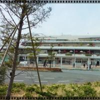 藤沢市・藤澤浮世絵館&アートスペース「緑、自然そして草間彌生」:松本美術館所蔵作品展★