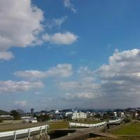 今日も好い天気!!