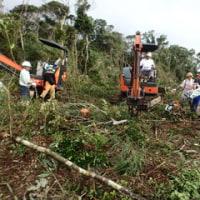 H地区で樹木の伐採が進む。