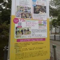 昨日の景色    札幌まちなか探検隊    花満開の初夏の街 大通り・花フェスタ2017にて(スタッフ撮影)