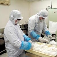 障害者施設が米粉麺製造スタート・村田