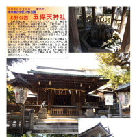 散策 「東京中心部北 309」 上野恩賜公園 五條天神社