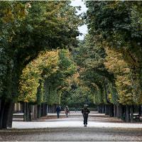 秋宮殿の庭