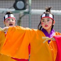 2017踊っこまつり  5月4日 本部競演場 いろは2