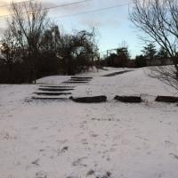 ちょっとだけ雪が積もったよ~。