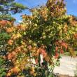 北海道の良い季節
