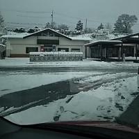 雪国から埼玉へ・・・
