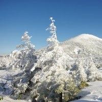 2016年12月3日 北八甲田 田茂萢岳のようす