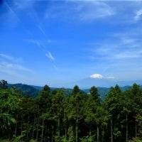 つぶらの公園から富士山