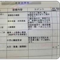 1姫ちゃん精密検査のひとりっこDAY