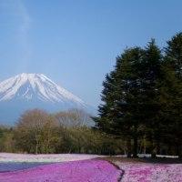 本日は 「富士山の日」です  d(゜-^*) ナイス♪