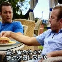 HAWAII FIVE-0 シーズン6 #11 「兄の使命」