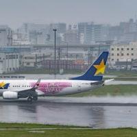 福岡遠征記#6 2日目、雨の送迎デッキより・・・3 (5月12日 福岡空港)