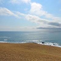 今日も穏やかな海