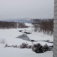 パンケ歌志内川の水門迄川沿いに歩いてみた